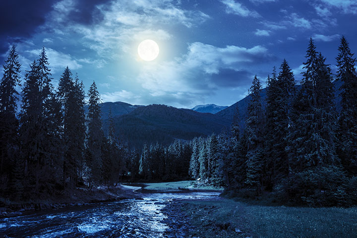 【福智僧團小故事】在人生的長河上凝望
